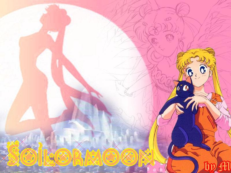 sailor moon wallpaper. sailor moon wallpaper.