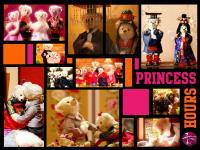 Princess Hours (Teddy Bear Version)