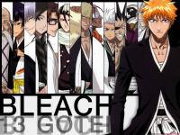 BLEACH-13 Gotei