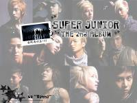 SuperJunior 2nd Album : Dont Don