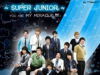 MIRACLE OF SUPER JUNIOR