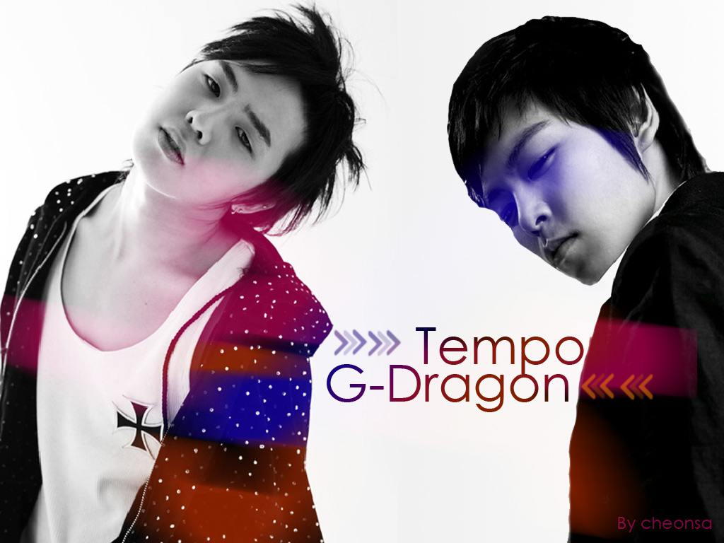 Extra Ordinary Big Bang TOP amp; GDragon Wallpaper