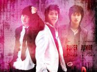 Super Junior :: Deep in Pink