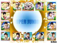 Super junior island