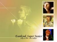 Eunhyuk Super Junior