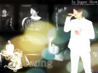 YeSung in Super Show