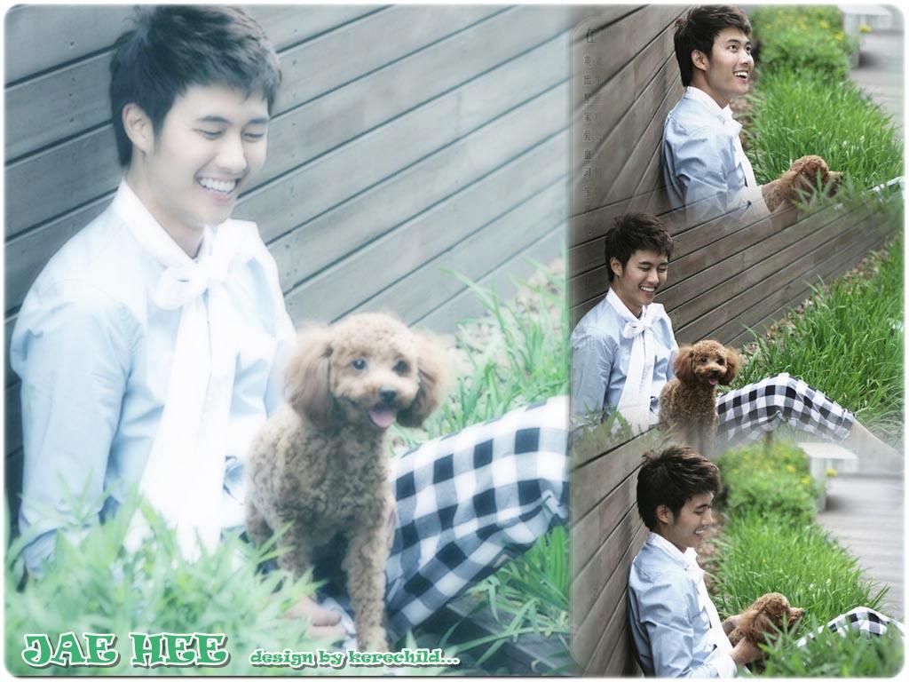 Jae Hee - Wallpaper