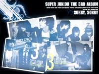 Super Junior The 3rd Album : Sorry, Sorry