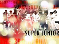 Super Junior - Sorry, Sorry