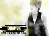 Super Junior  The 3rd Album : Eunhyuk