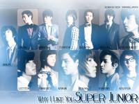 Why I Like You,Super Junior