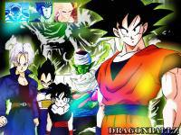 Dragonball Z : Power Z