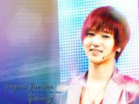 I Miss Super Junior Yesung