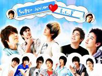 Super Junior LOVE Elf