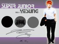 No.4 Super Junior Yesung