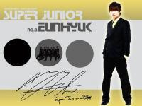 No.8 Super Junior Eunhyuk