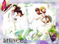SHINEE IN YOUR DREAM