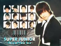 SUPER SHOW : DONGHAE
