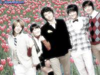 Boys before flower 02