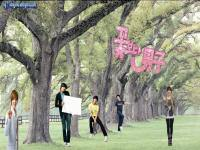 boys before flower 5