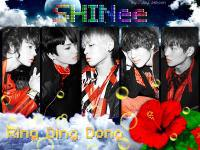 SHINee ~Ring Ding Dong~