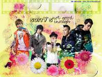 BigBang ;; Flower And Light