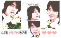 ' DONGHAE ; flower for you ✿