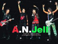 A.N.Jell : You're beautiful!!!