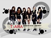 T-ARA    Breaking Heart