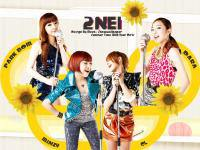 Summer Time With 2NE1