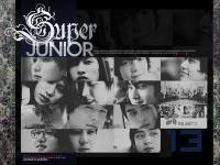 » SUJU ll BOY IN THE CITY 3。