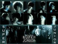 Super Junior[4th Album] # BONAMANA