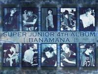 Super Junior[4th Album] BONAMANA