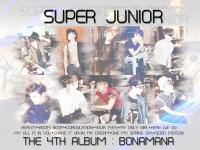 Super Junior Gallery Ver.1