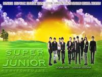 "Super Junior ""BONAMANA"""