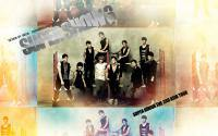 Super Junior : Super Show 3 [widescreen]