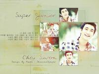 Siwon : No other