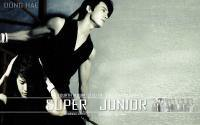 "Super Junior ""No Other "" Donghae"