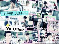 No Other :: Super Junior Ver.2