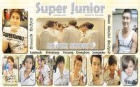 "Super Junior in ""Super Show 3"""