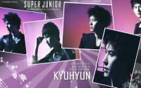 Super Junior SS3  :: Kyuhyun