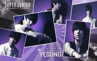 Super Junior SS3 :: Yesung