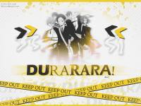 Durarara! black & yellow .