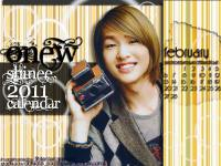 shinee wallpaper 2011 (Onew)