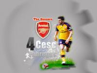Cesc Fabregas .. Arsenal the gunners!