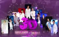 Super Junior :: Super Show 3 [3d]