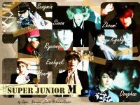 Super Junior M_[Perfection]