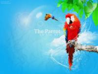 The Parrot in the sky (: