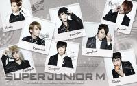 Super Junior M :: [2rd Mini Album Repackage] ver.2