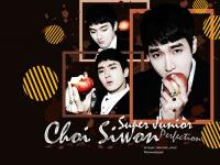 Siwon_SJ-M[Perfection]